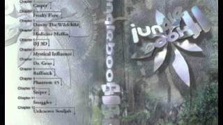 Jungle Book 2 Freaky Flow Chapter 2 Chicago DnB Mixtape