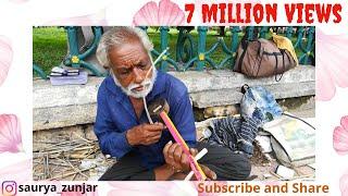 Mysore Palace street artist (Voilin Player)