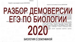 Разбор демоверсии ЕГЭ по биологии 2020