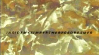Coldcut & Hexstatic - Timber (Clifford Gilberto A Different Forest)