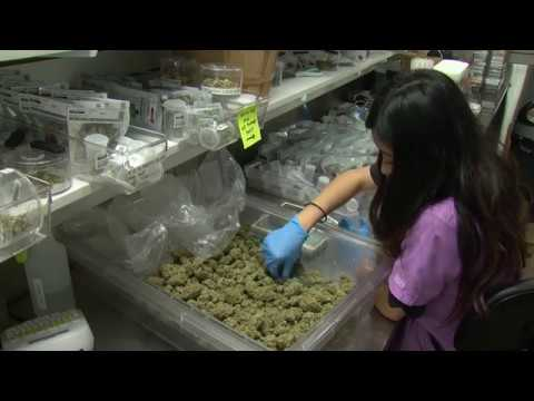 Seed To Sale: How Will San Diego Treat The Cannabis 'Supply Chain?'