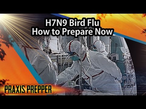 H7N9 Bird Flu - How to Prepare Now
