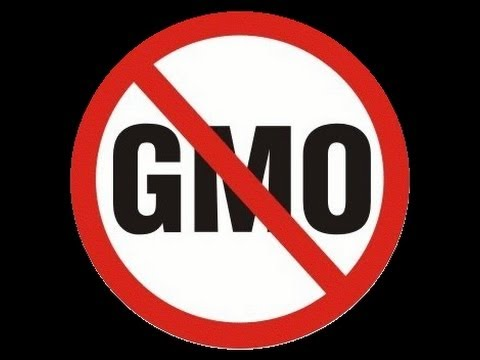 All The GMO Info You Need! - Tele-Forum #2