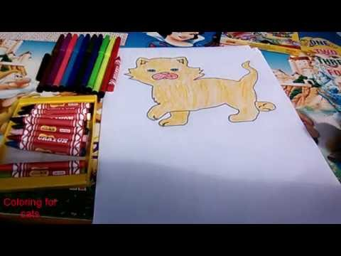 pictures of cats cat coloring tutorial   YouTube pictures of cats cat coloring tutorial