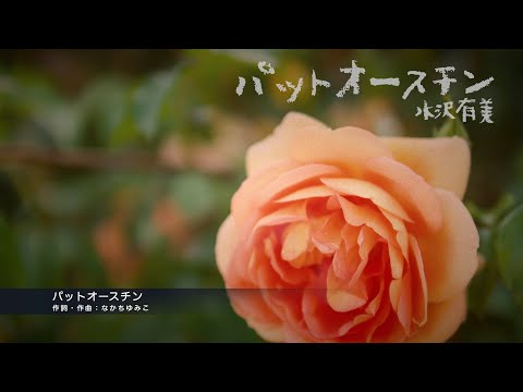 CD「パットオースチン / 水沢有美」