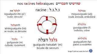 Racineglgl