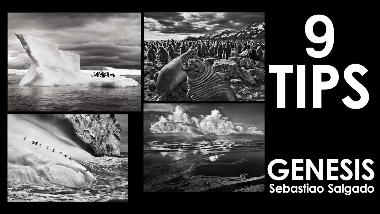 9 photography tips i learned from sebastiao salgado genesis book