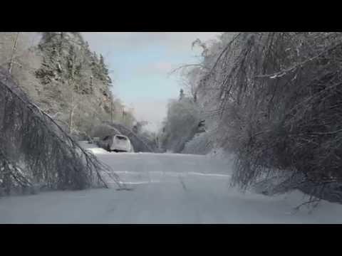 Ice Storm Damage - South West New Brunswick, Canada