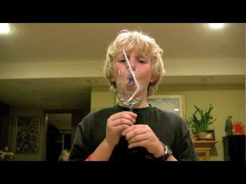 Thumbnail: Boy Breaks Wine Glass with Voice