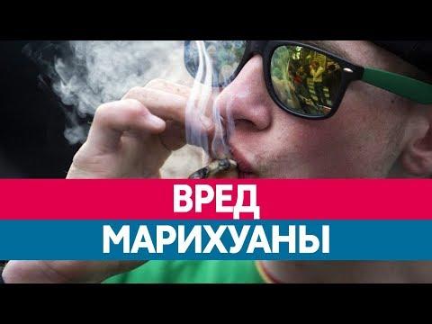 Чем опасно КУРЕНИЕ МАРИХУАНЫ? Вред конопли и каннабиса! Наркотики и марихуана