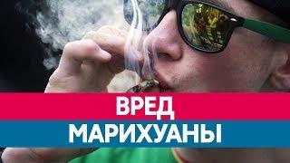 Чем опасно КУРЕНИЕ МАРИХУАНЫ? Вред конопли и каннабиса!(Вред наркотиков - опасно ли употребление марихуаны, а также является ли она безопасной по сравнению с обычн..., 2016-07-28T12:08:45.000Z)