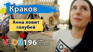 Новинки МакДональдс в Польше Анна ловит голубей на площади в Кракове Глазами туриста