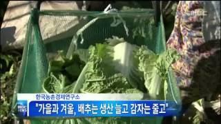 [안동MBC뉴스]일]가을·겨울 작물 재배의향 조사 결과