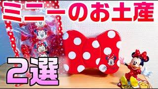 【可愛い】ディズニー ミニーのリボン型マドレーヌとチョコインクッキーのご紹介(ミニーちゃんも登場)