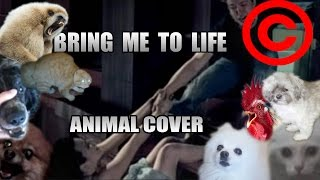 Baixar Evanescence - Bring Me To Life (Animal Cover) [REUPLOAD]