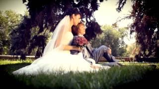 Свадебный клип Волгоград, свадьба в Волгограде, свадебное видео