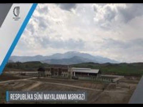 Respublika Süni Mayalama Mərkəzinin açılışı olub 14 08 2017