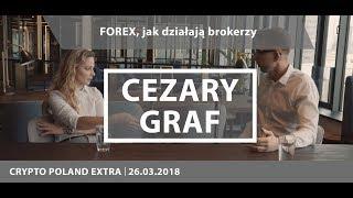 FOREX, jak działają brokerzy