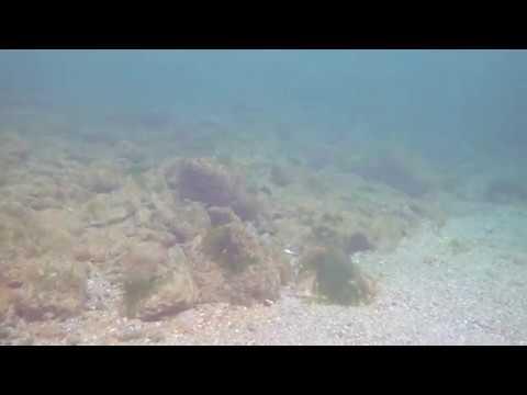 Black Sea Thermocline in 4K