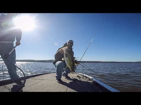 Lake Seminole | Highlights