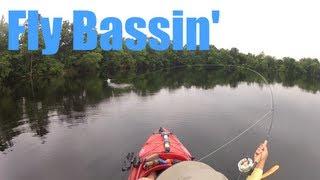 Fly Bassin
