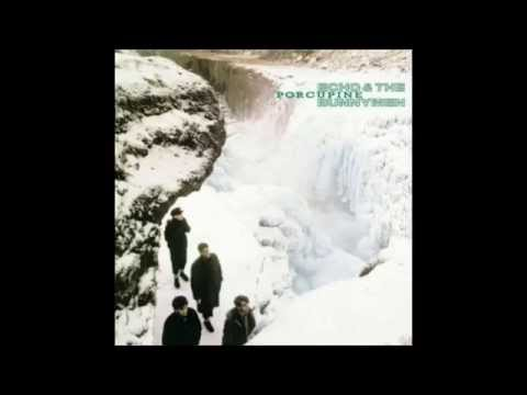 Echo & The Bunnymen - Porcupine (album Version)