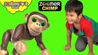 Toddler playing with a MONKEY! Zoomer Chimp Review monkey toys for kids playtime