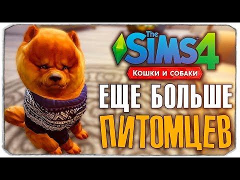 """БЕРЕМ НОВОГО ПИТОМЦА? - The Sims 4 """"Кошки и Собаки"""" ▮"""