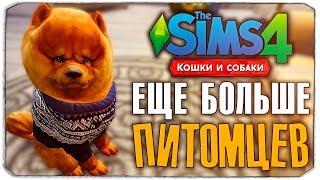 БЕРЕМ НОВОГО ПИТОМЦА? - The Sims 4 'Кошки и Собаки' ▮