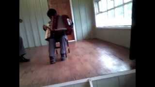 El pequeno de la acordeon (Carlos Nicolas Velasquez Barria)