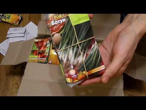 Большая посылка семян с интернет магазина Agro-market