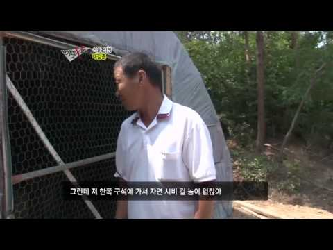 #06 '착한 식당, 방송 후 15일 문닫은 사연?.이�