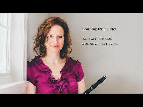 Learning Irish Flute - Tune of the Month with Shannon Heaton - Top of Maol [Polka]