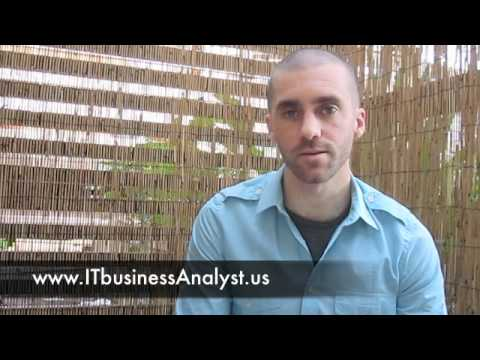 IT Business Analyst, Process Improvement Consultant - Travis Ramsey, Independent Contractor