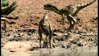 Infant Allosauruses - Walking with Dinosaurs: Ballad of Big Al - BBC