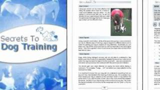 Secrets To Dog Training Free Download!!!
