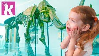 Палеонтологический Музей Динозавров Dinosaur Museum for kids