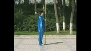 Master Cui Zhong San Traditional Yang Style Tai Chi DaGan1