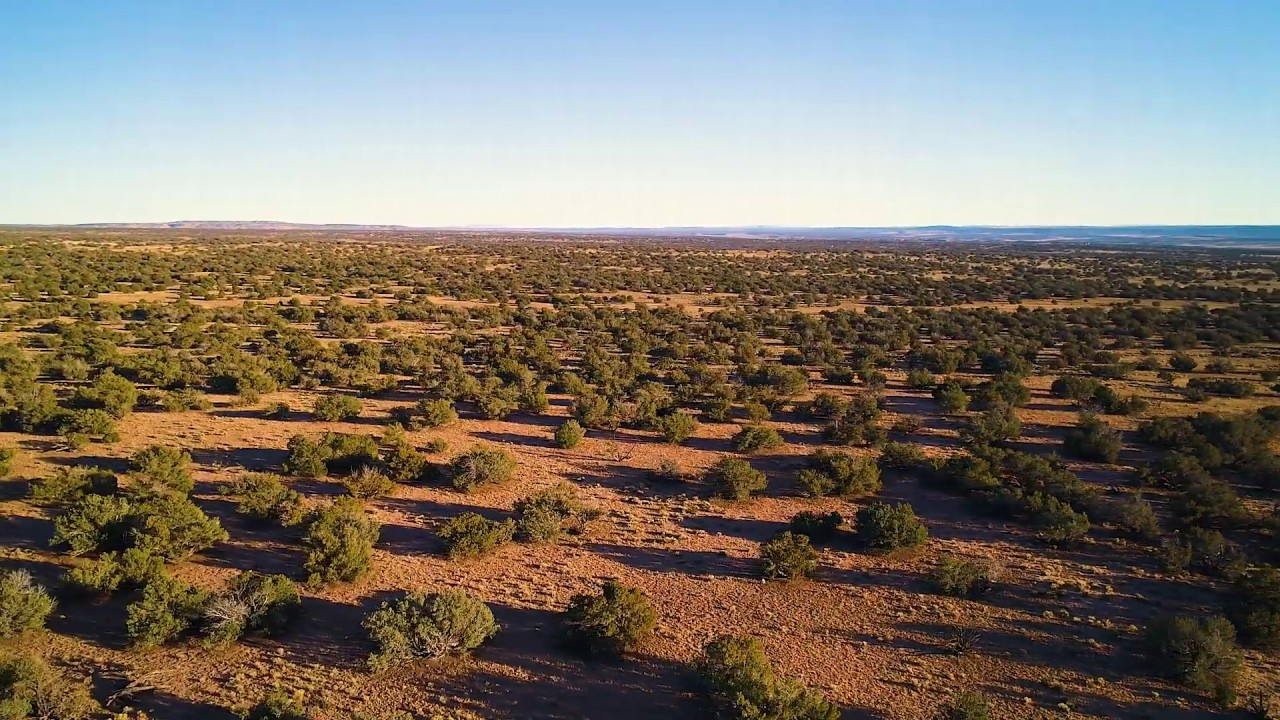 SOLD by Compass Land USA - 38 Acres | Apache County, Arizona - Parcel 204-62-590
