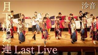 【月下桜舞連 公式】Last Live ⑤ ~沙音~