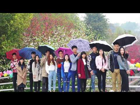 CHINA THREE GORGES UNIVERSITY(OFFICIAL VIDEO). CTGU . STUDY IN CHINA .