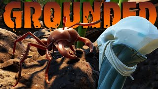 Destroying the Ant Population in Grounded Gameplay