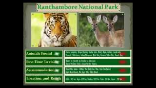 Top 10 Wildlife Destination in India