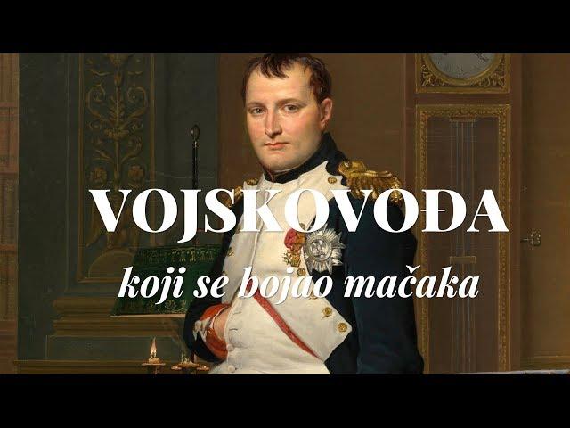 Napoleon! Vojskovođa koji se bojao mačaka