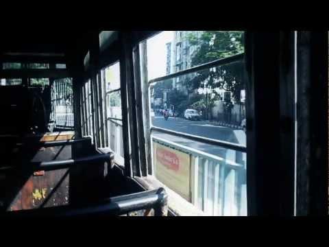 Brooklyn Shanti - Sugar Cane Riddim - the...