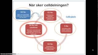 Introduktion till celldelning