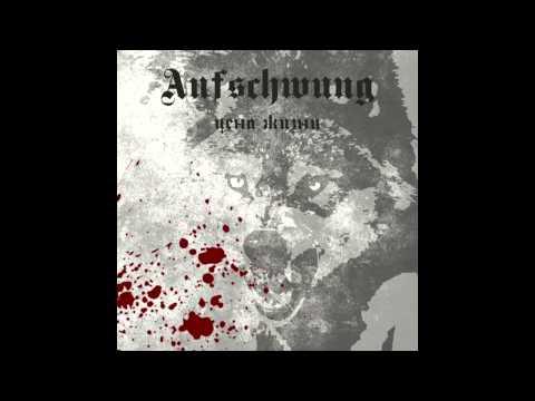 Aufschwung - Неизвестный Солдат