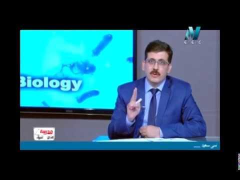 21-11-2017 أحياء لغات حلقة 12 Reproduction in Human أ يحيى سالم / أ أشرف فرغلي