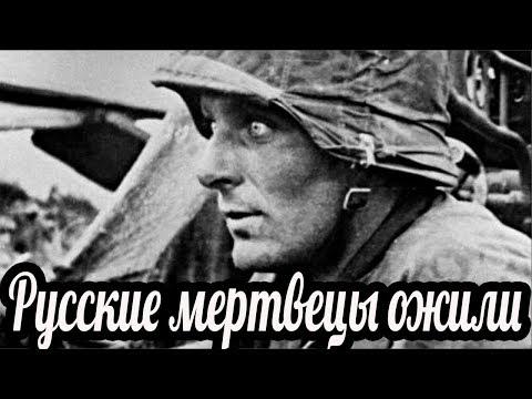"""""""Русские мертвецы ожили"""". Воспоминания Хельмута Фихта. Битва за Севастополь , военные истории"""
