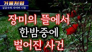 장미의 뜰에서 한밤중에 벌어진 사건(김갑수의 사이버 연…